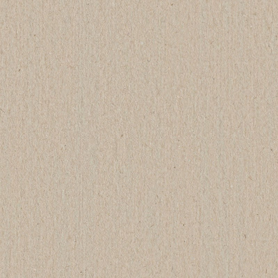Seamless plywood cardboard texture
