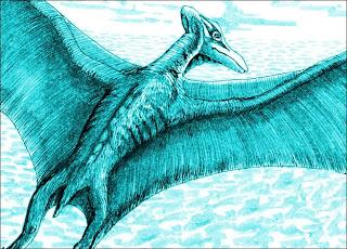 Misteri Thunderbird, Cryptid Burung Raksasa - munsypedia