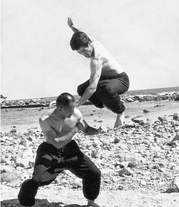 """""""La boxe forma la base del JKD, ma molto del JKD è esattamente l'opposto della boxe"""". Ted Wong"""