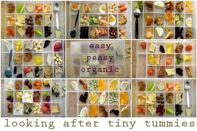 easy peasy organic lunchbox ideas