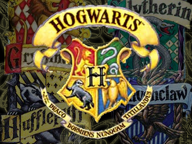 jk rowlings harry potter muggle vs wizard school For years, there have been various accusations that jk rowling stole the characters or ideas for her series of harry potter books the claim that got the most attention was nancy stouffer's book .