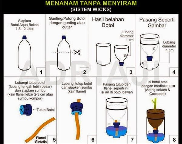 Image Result For Media Tanam Hidroponik