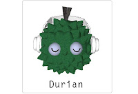 Durian  Flashcard