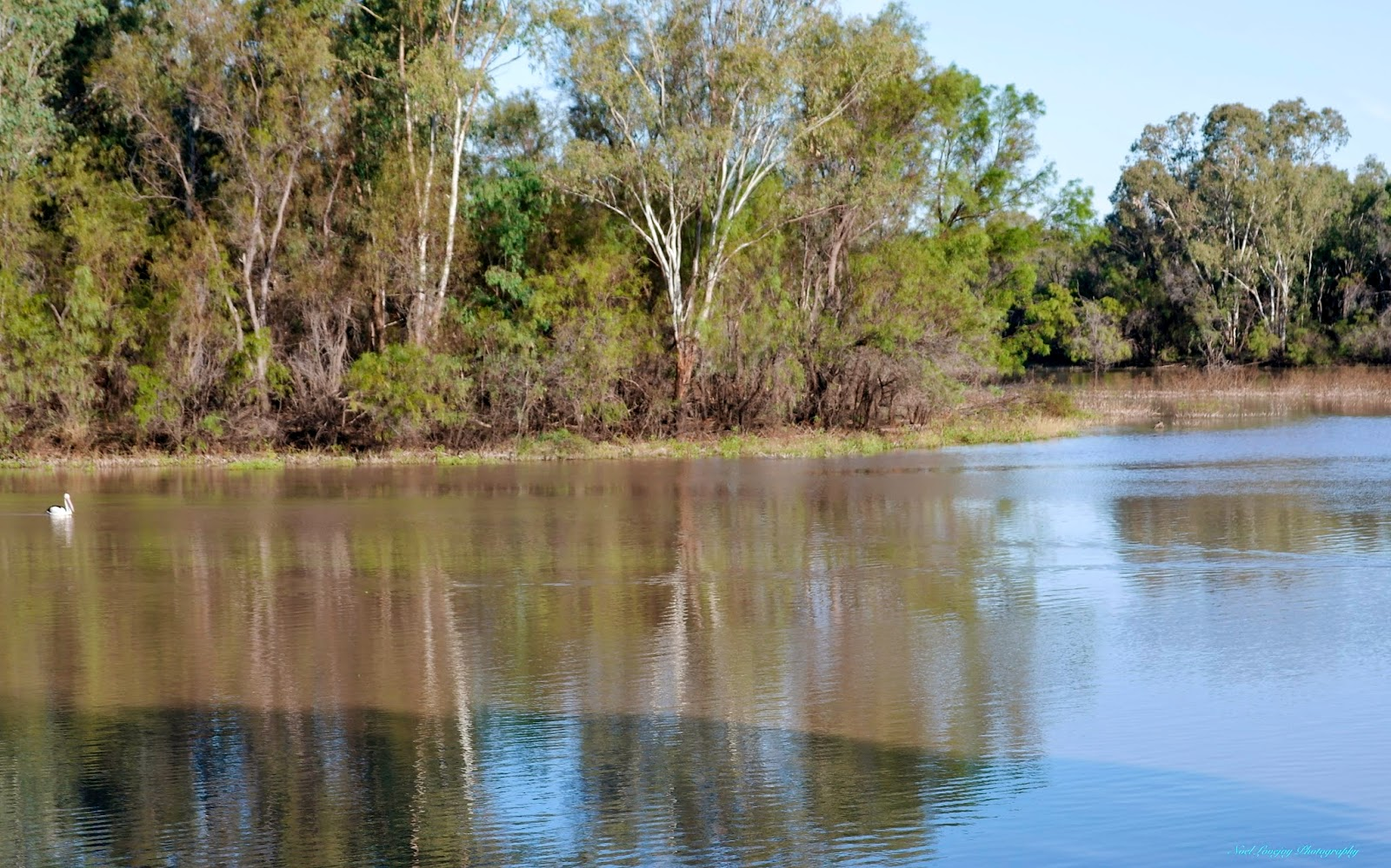 Chinchilla Australia  city photos : Can Go Around Australia: Meandarra and Chinchilla Weir, Queensland.