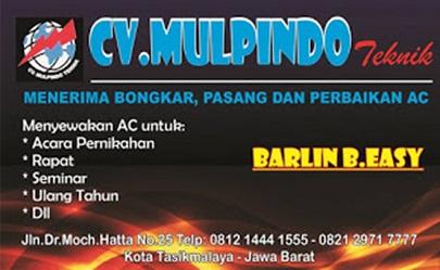 CV Mulpindo