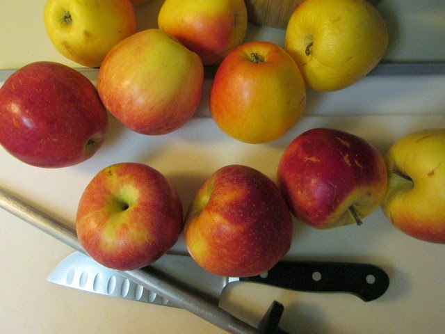Apples from Reed Valley Orchard