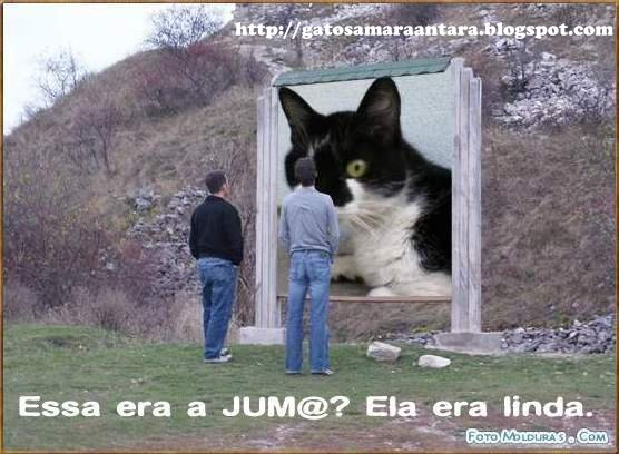 JUMA, IN MEMORIAM