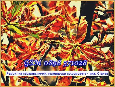 сервиз за битова техника, есен, София, ремонт, майстор, елтехник,ремонт на перални по домовете,