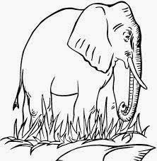 mewarnai gambar gajah untuk anak 9