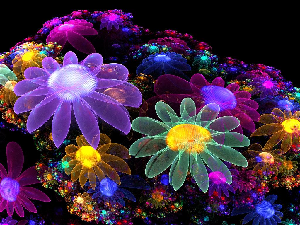 Best Wallpaper 2012 May Flowers