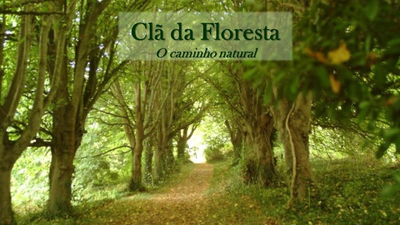CLÃ DA FLORESTA