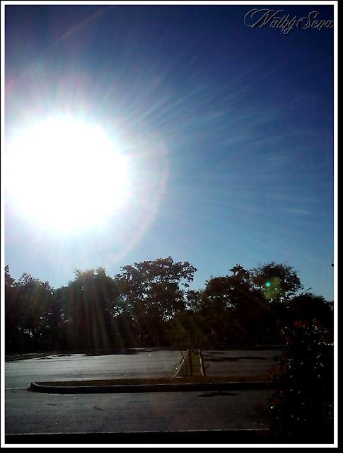 Diário fotográfico #4 - Sol