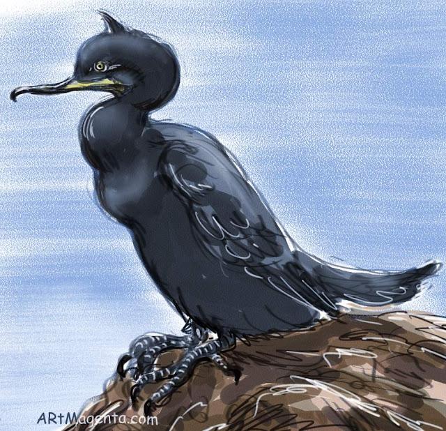 En  fågelmålning av en toppskarv  från Artmagentas svenska galleri om fåglar.