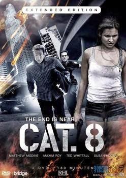 CAT. 8 2013 poster