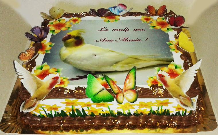 vafa tort poza