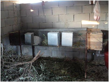 Κατασκευή κλούβας κουνελιών
