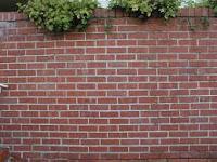 """<img src=""""tembok.jpg"""" alt=""""jika hidup ini adalah sebidang tembok"""">"""