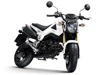 Gambar Motor 2014 Honda MSX125 - 2