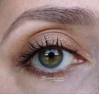 Lancome Hypnose Dazzling Eyeshadow in Brun Bibliotheque: worn on eye