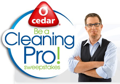 O-Cedar Be a Pro