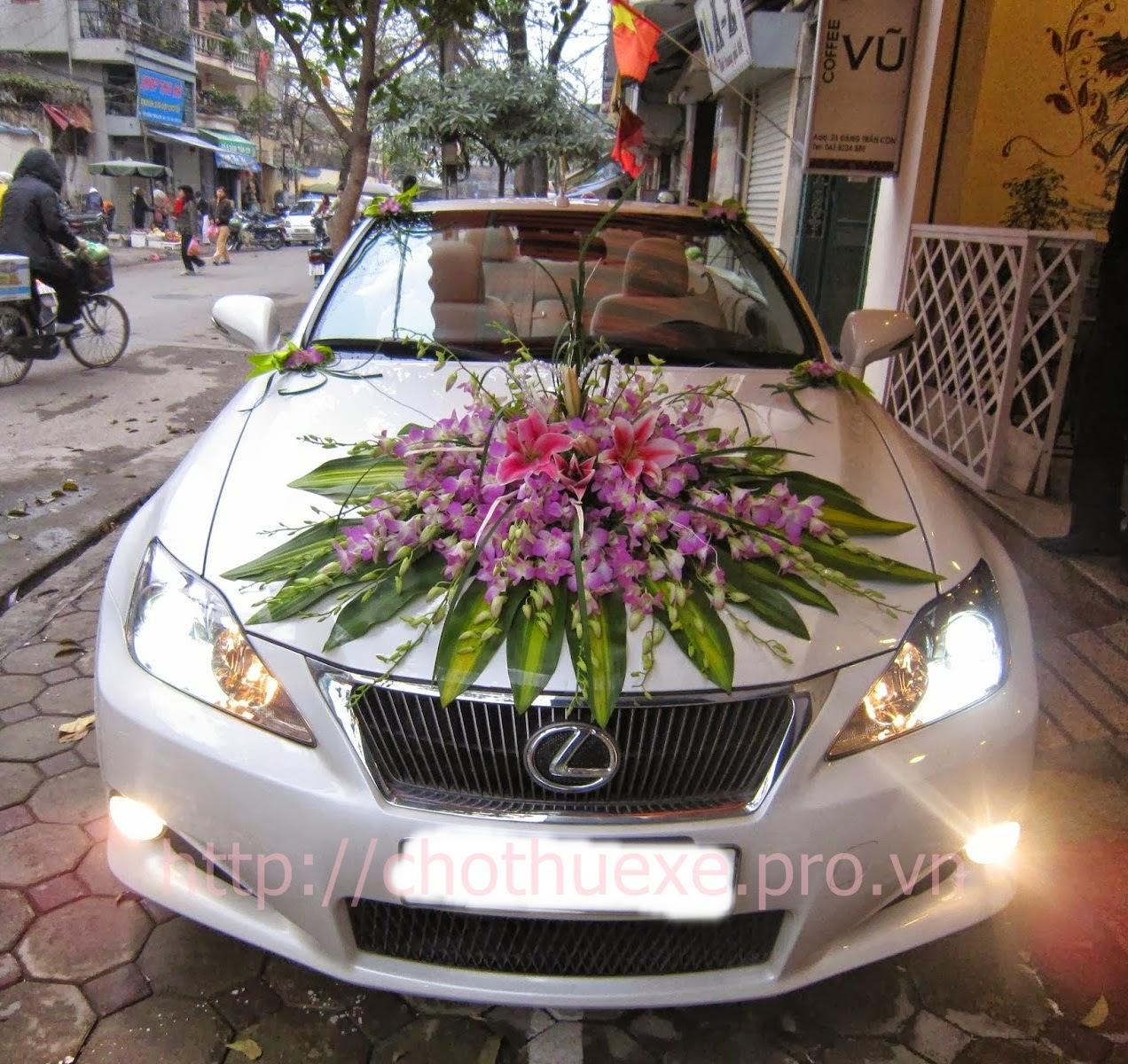 Cho thuê xe cưới mui trần Lexus IS 250C giá ưu đãi tại Hà Nội
