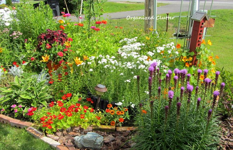 Organized Clutter Yard of Flowers Garden Tour 2013