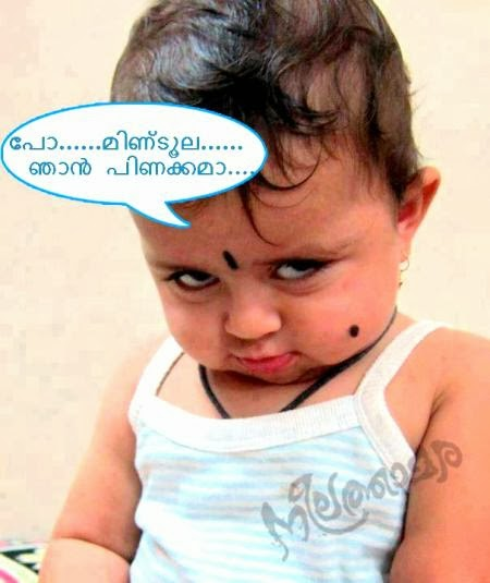 Latest Malayalam News: Latest Malayalam Funny Photos