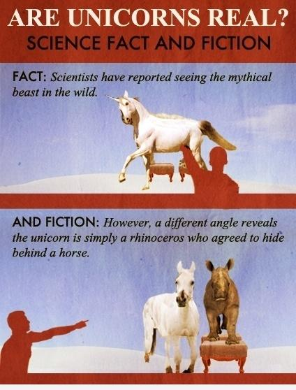 Are Unicorns Real? funny pic
