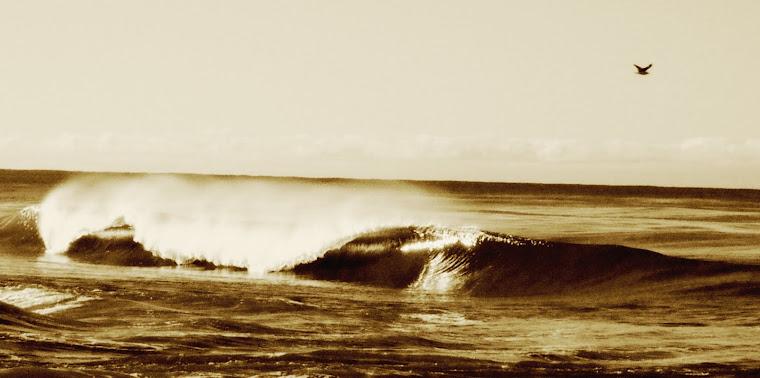 Ola Oceano Pacífico