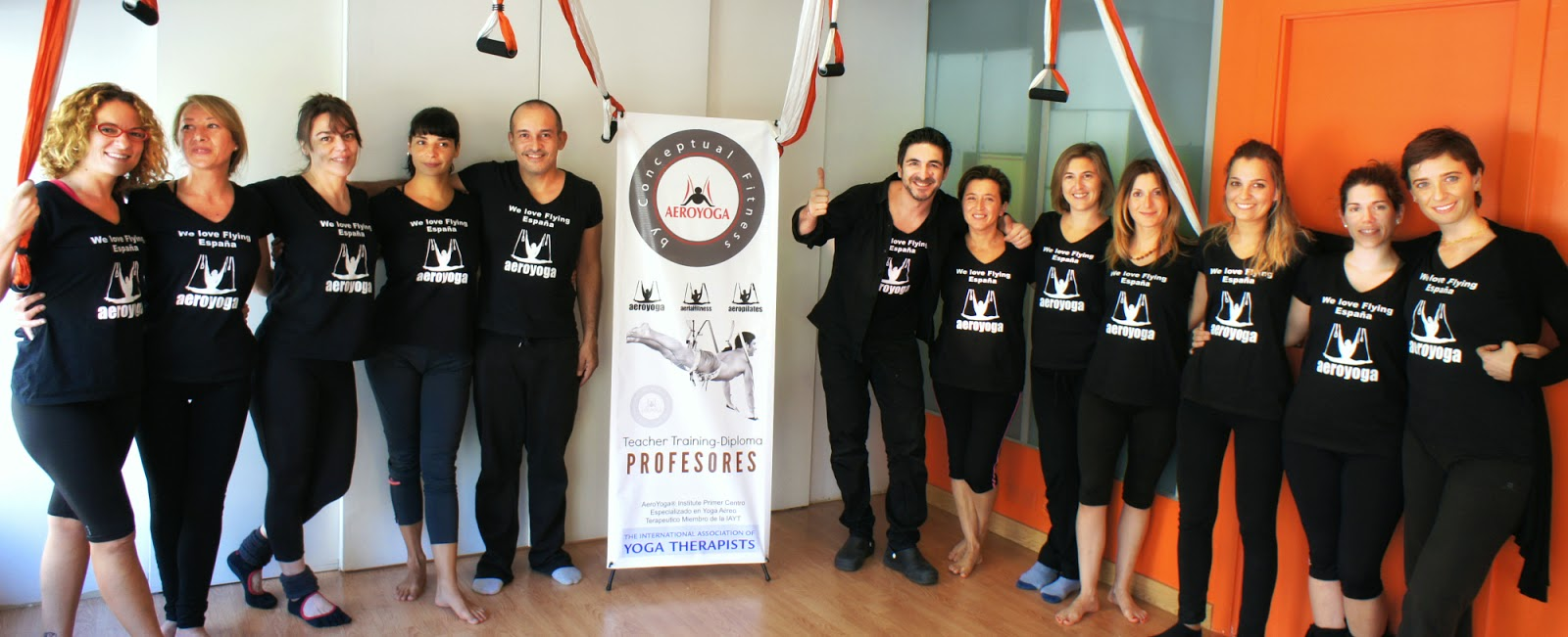 aerial yoga teachers training