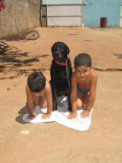 www.isisvebber.blogspot.com.br