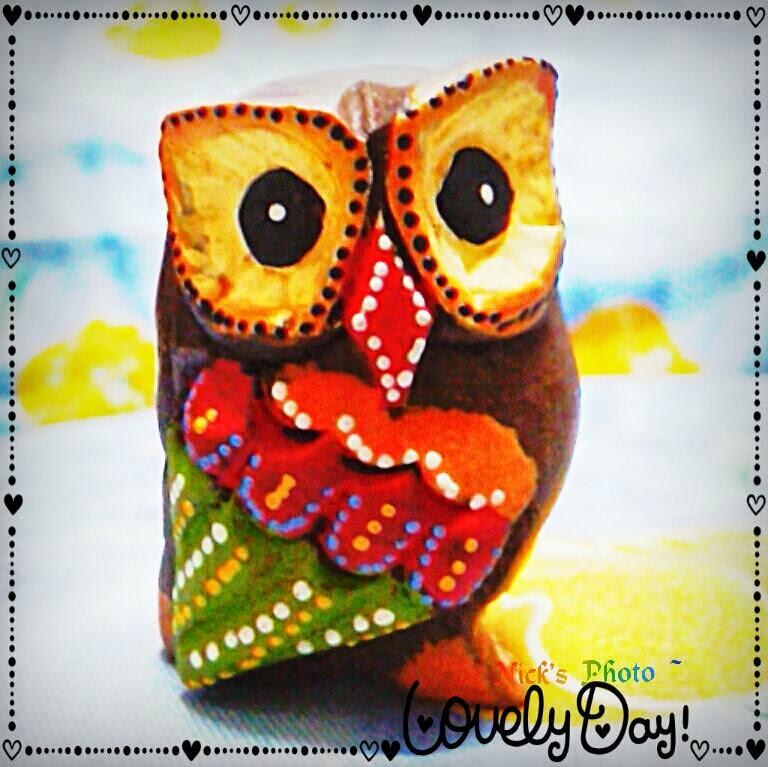 I Love Owl。我爱猫头鹰