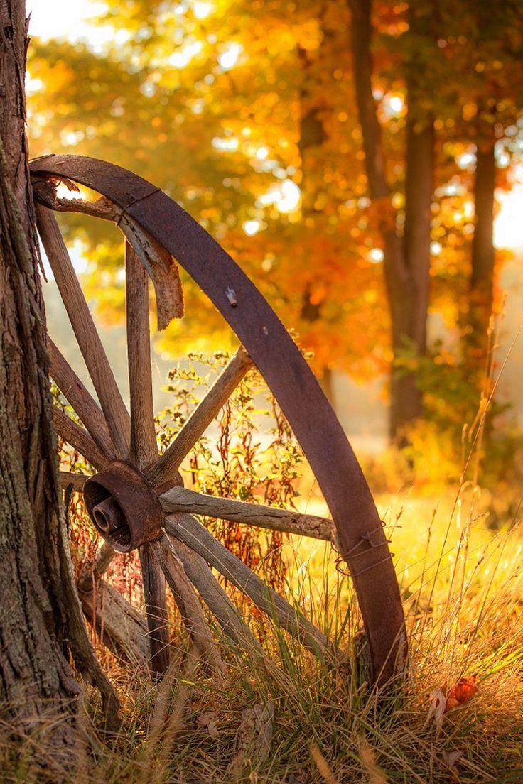 aria-autunno