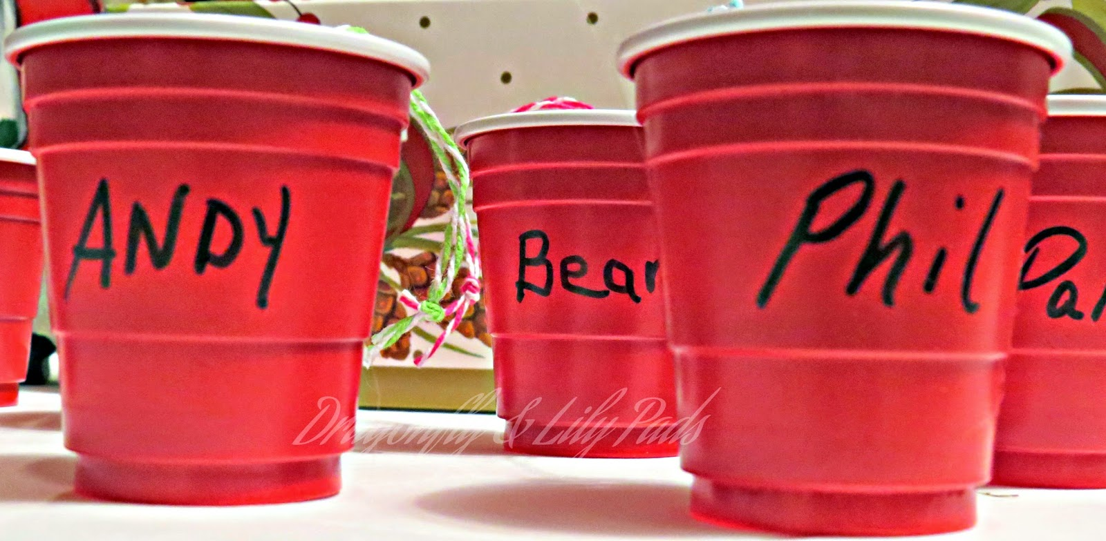 Names. Sharpie Marker, Christmas Ornament, Red Solo Cup Gift