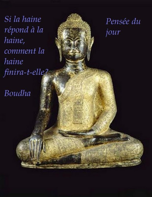 la citation du jour - Page 4 A+bouddha+haine