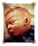 Tristan 1, né le 12 Juillet 2011