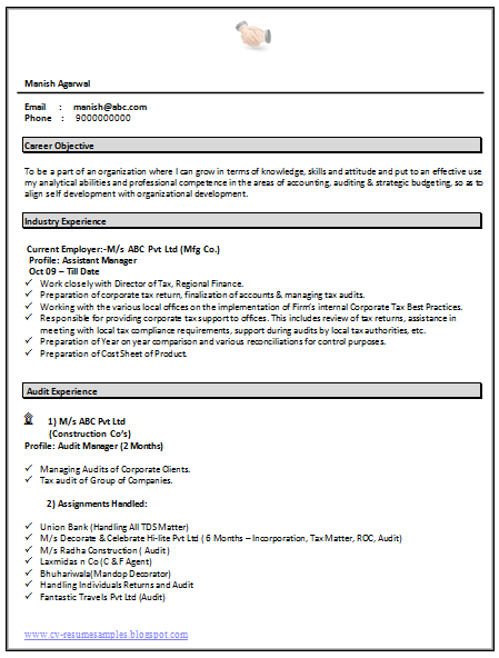 resume format doc accountant