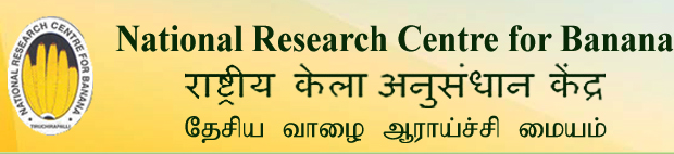 Apply for Senior Research Fellow Posts
