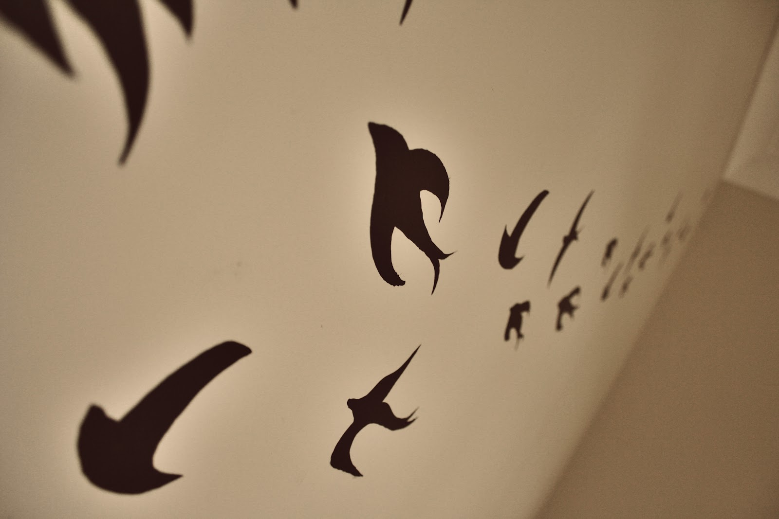 The pineneedle collective so i got the urge to paint birds on my so i got the urge to paint birds on my wall today amipublicfo Images