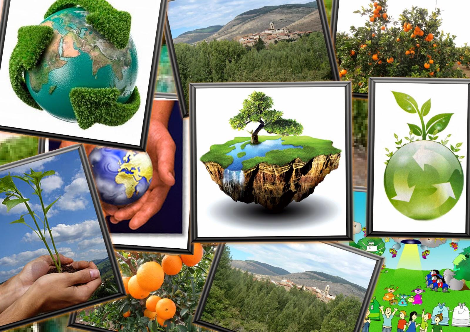 El blog de jos m valdecantos d a mundial del medio - Humidificar el ambiente ...