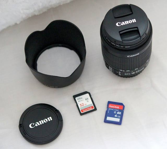 cannon photography bloggers camera recommendations