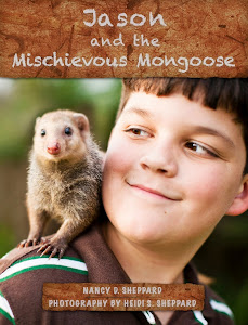 Jason and the Mischievous Mongoose - iPad edition