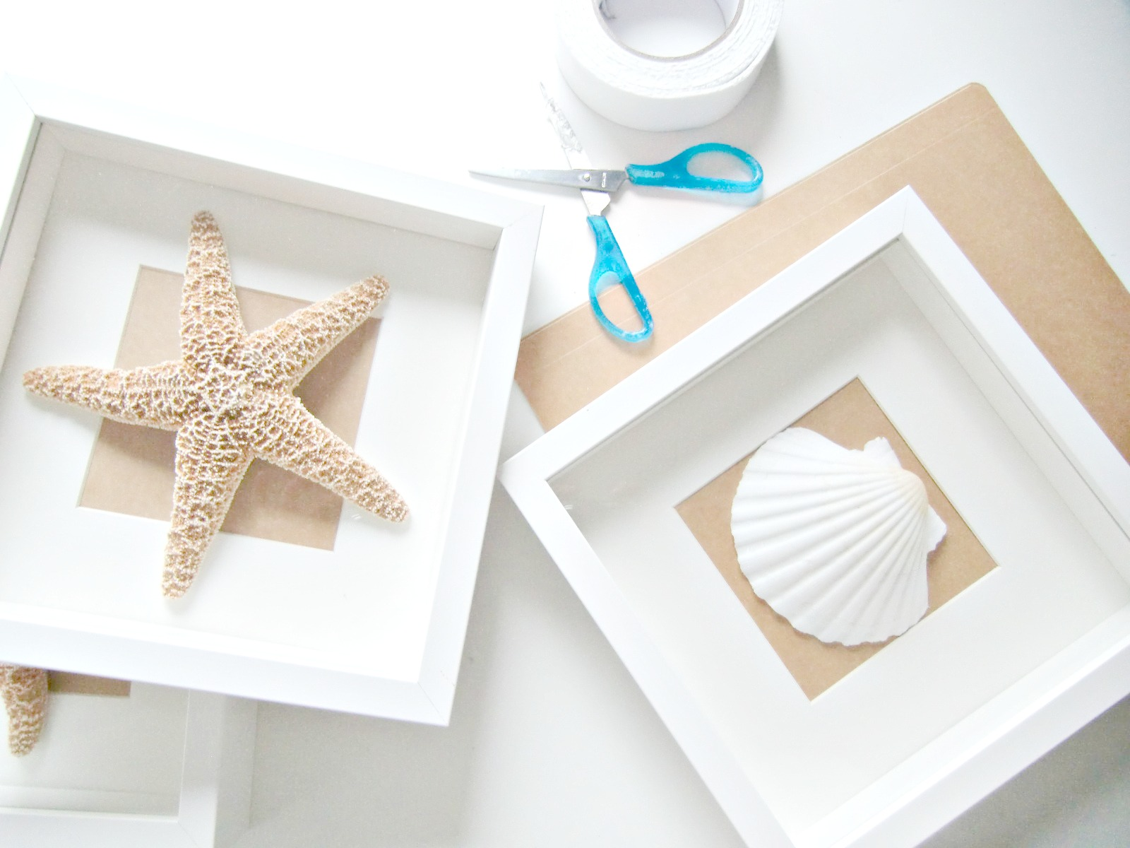 Vicky 39 s home diy cuadros de conchas y estrellas de mar - Como decorar un dibujo ...