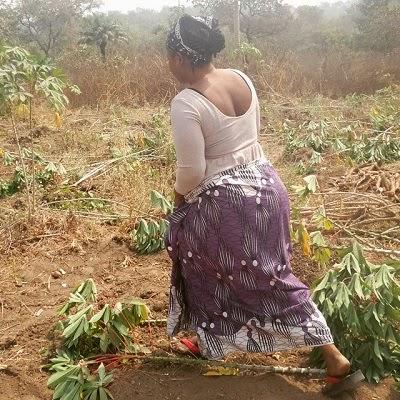 halima abubakar farming
