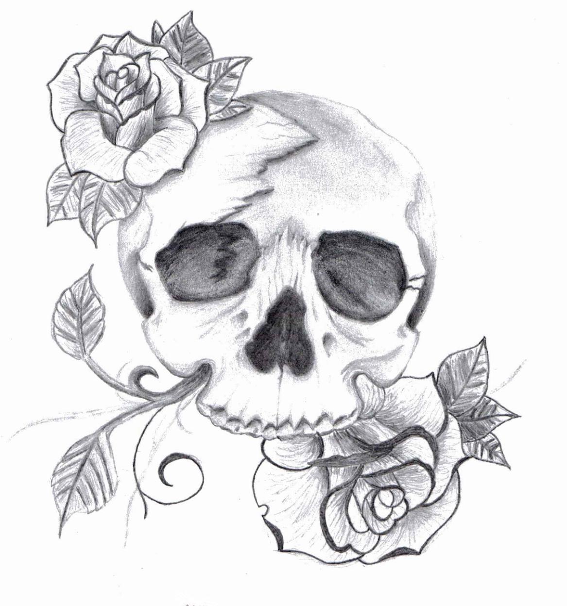 Cool Skull Sketches Skull drawings