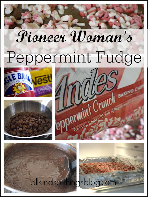 Peppermint Fudge