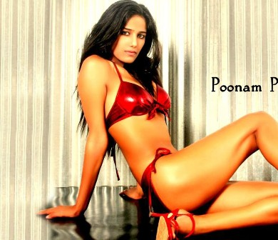 poonam pandey of poonam pandey poonam pandey hot images