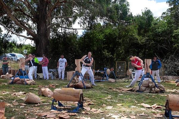 Australia Day, Greendale 2015