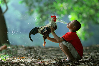 Photoworks by Asit