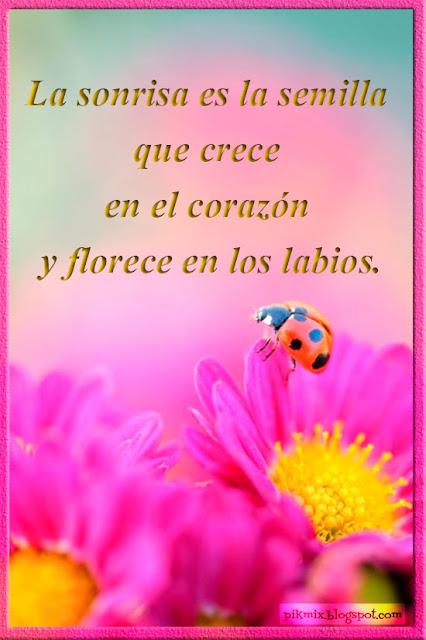 La sonrisa es...• Tarjetitas para facebook • Flores
